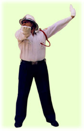 Traffic Police Hand Signals - To start vehicles on T-Point